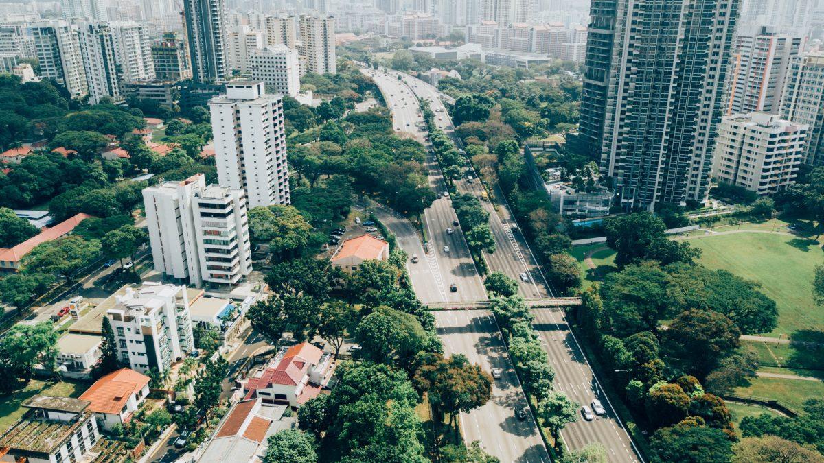 Arborização urbana: 3 pontos que merecem atenção